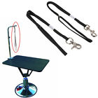 ADJUSTABLE DOG PET GROOMING TABLE ARM BATH RESTRAINT ROPE HARNESS WIDE USE